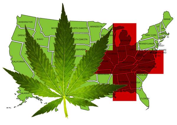 USA-medical-weed