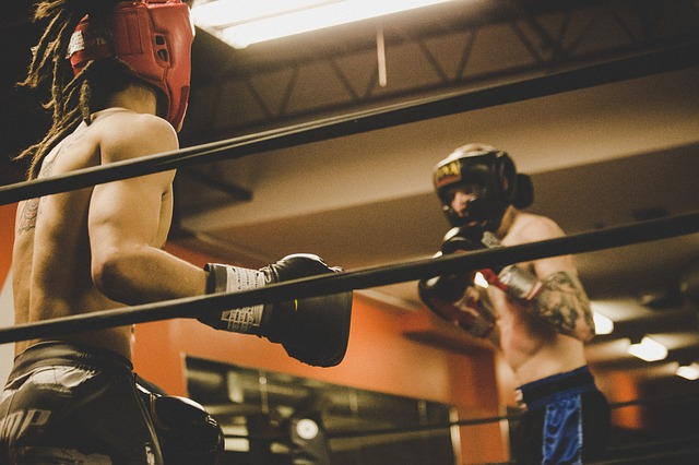 boxers-boxing