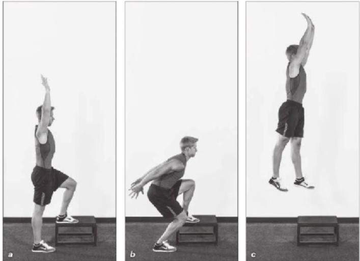 登階跳-爆發力-訓練-教學